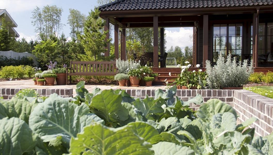 Огород. Идея выращивать свою собственную еду – еду с контролируемым происхождением и историей – проникает в широкие массы населения независимо от их обеспеченности