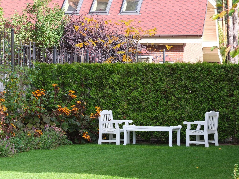 Садовая мебель на фоне живой изгороди